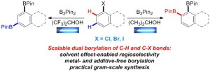 Additive- and Metal-Free, Predictably 1,2- and 1,3-Regioselective, Photoinduced Dual C–H/C–X Borylation of Haloarenes.