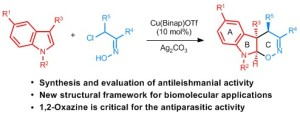 Insights into the Structural Patterns of the Antileishmanial Activity of Bi- and Tricyclic N-Heterocycles